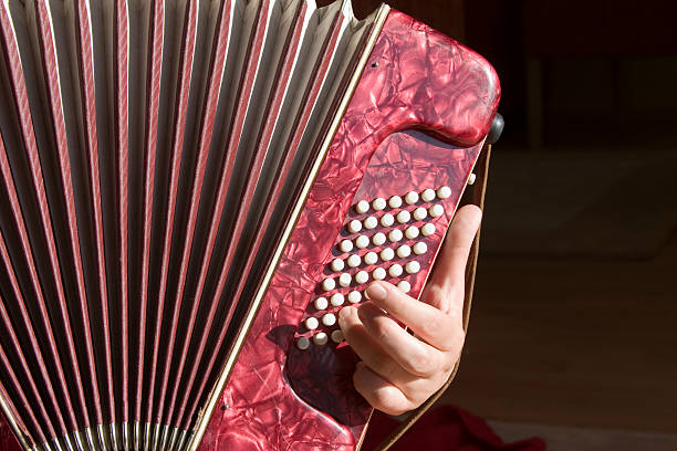 accordion player - accordion stock photos and pictures