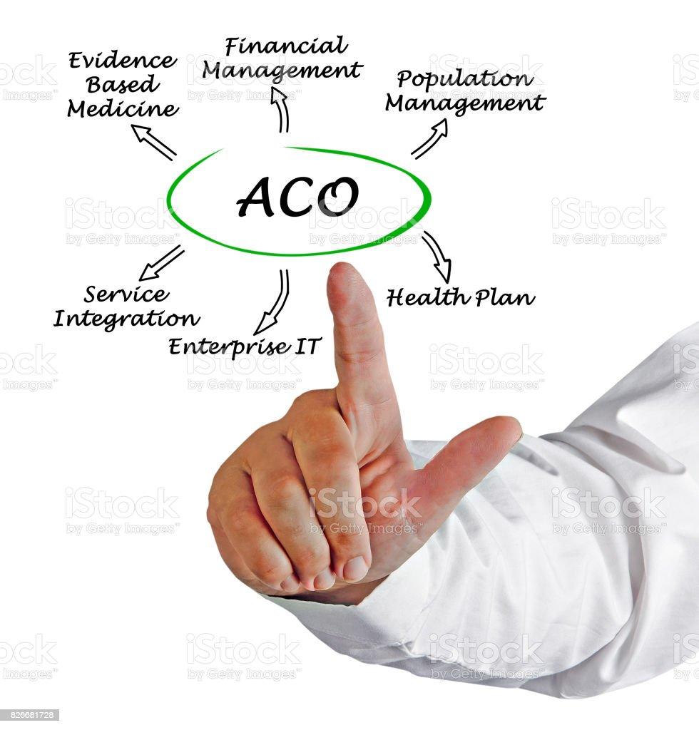 Accountable Care Organizations stock photo