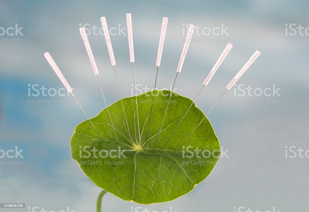Accupuncture Nasturnium leaf stock photo