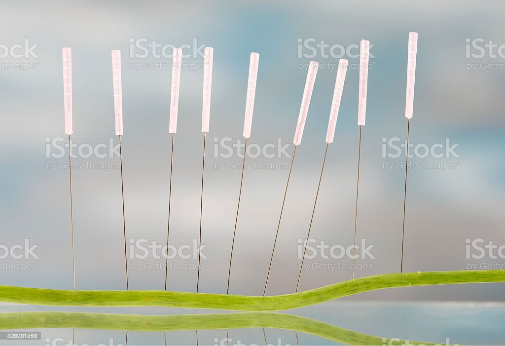 Accupuncture Nasturnium stem leaf stock photo