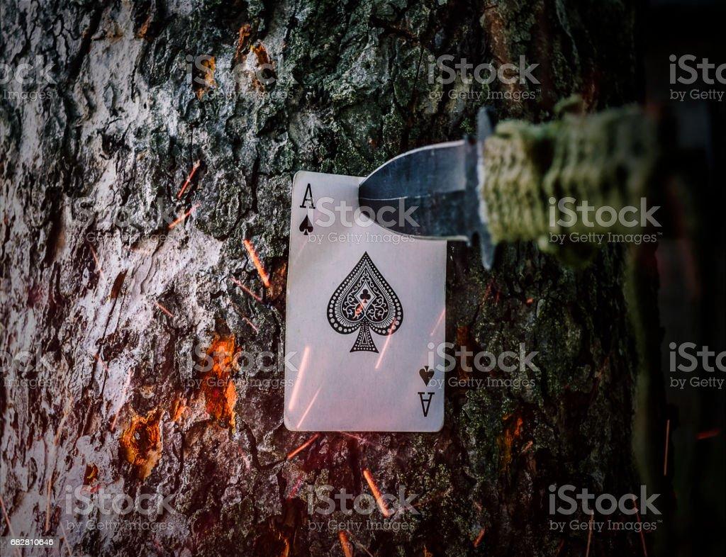 ace of spades – zdjęcie