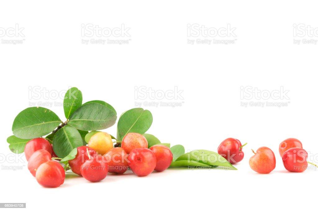 Acerola cherry of thailand on white background stock photo