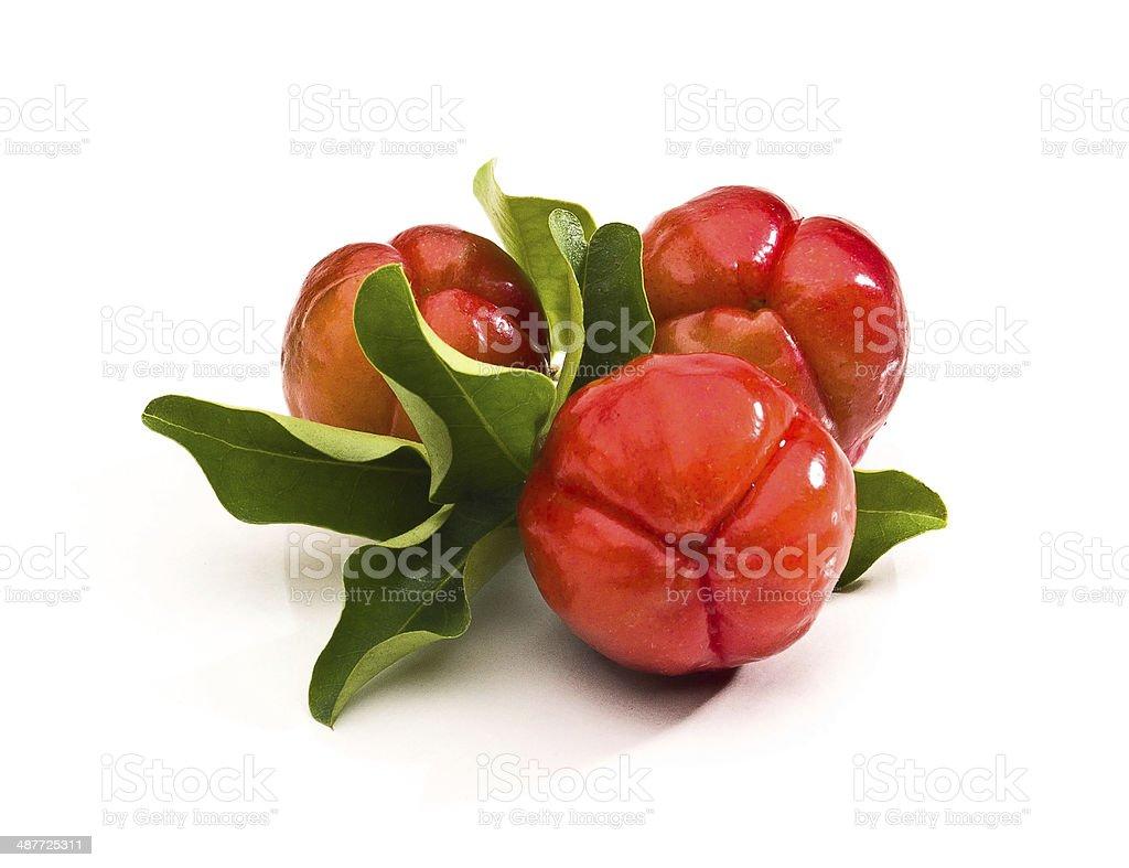 Acerola fruit stock photo