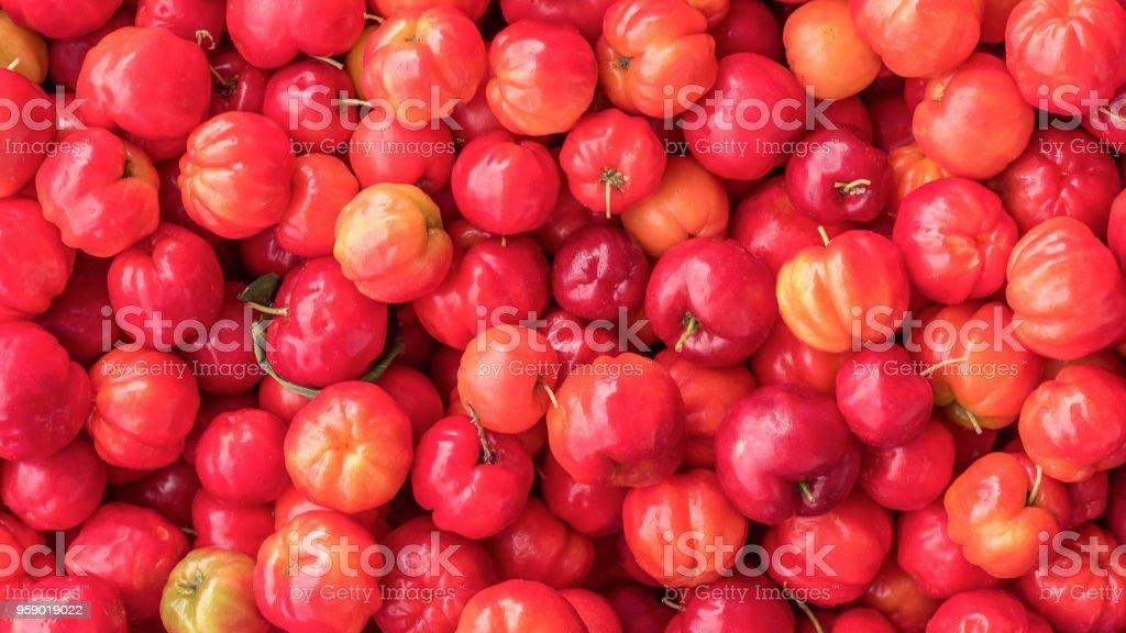 Acerola fruits stock photo