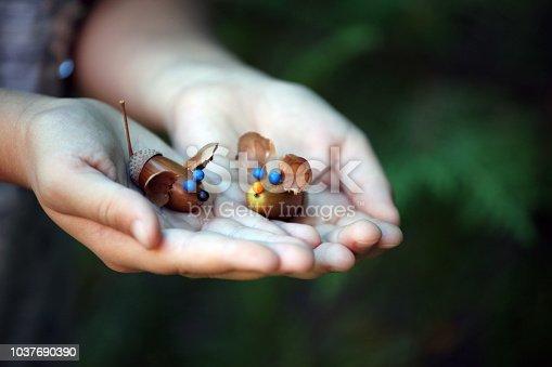 istock Acorn girl hands autumn 1037690390