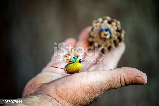 istock Acorn man hands autumn 1037007944