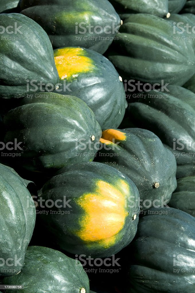 Acorn Squash at a Farmer's Market royalty-free stock photo