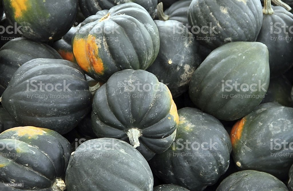Acorn Squash at the Farmers Market royalty-free stock photo