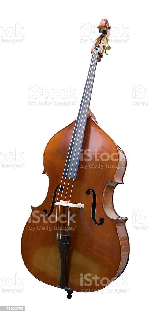 Acoustic bass, 3/4 right-front view, isolated stock photo