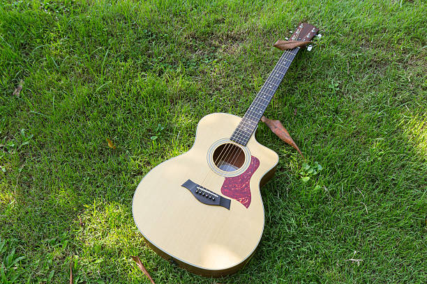 acoustic guitar on grass stock photo