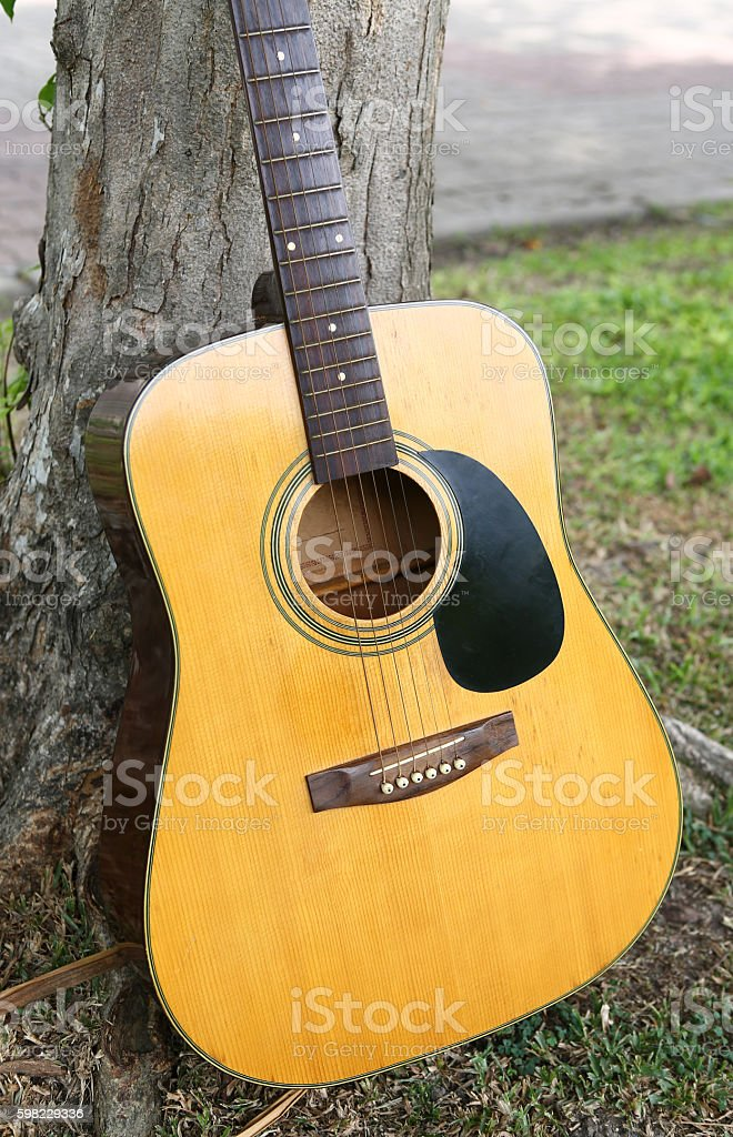 Acoustic Guitar on green grass foto royalty-free