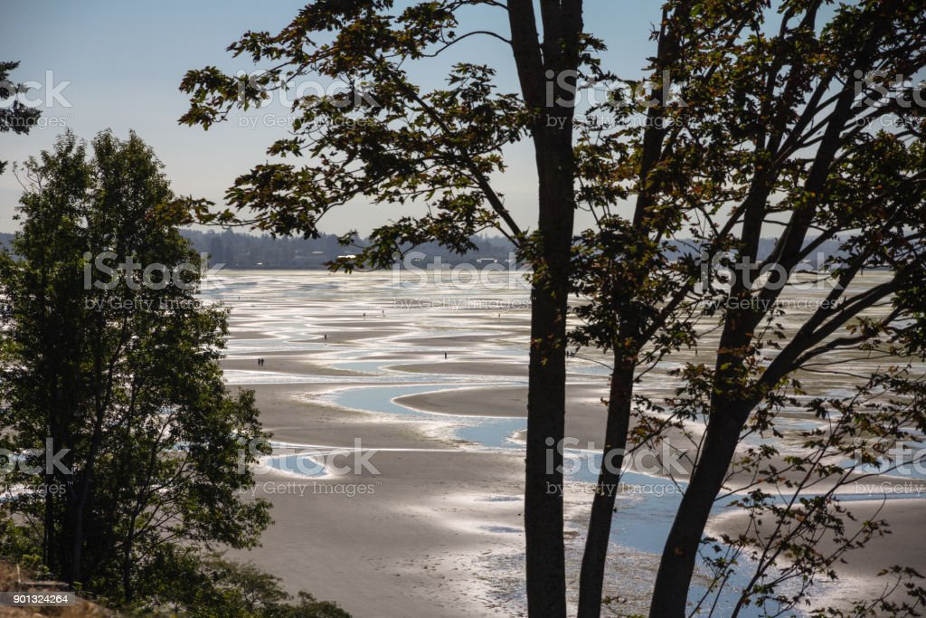 Acres of sand and mud - tidal flats near White Rock stock photo