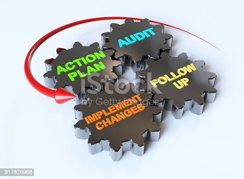 istock Action Plan 917826968