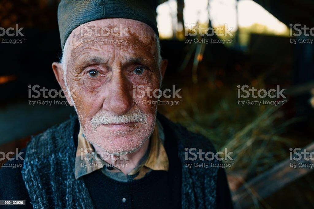 Active farmer 85 years old zbiór zdjęć royalty-free