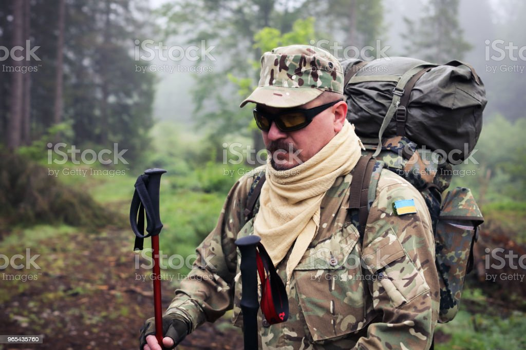 Active healthy man hiking in beautiful forest royalty-free stock photo