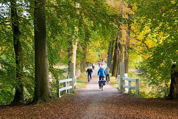 Active people riding bicycles in woods in autumn, Netherlands – Foto