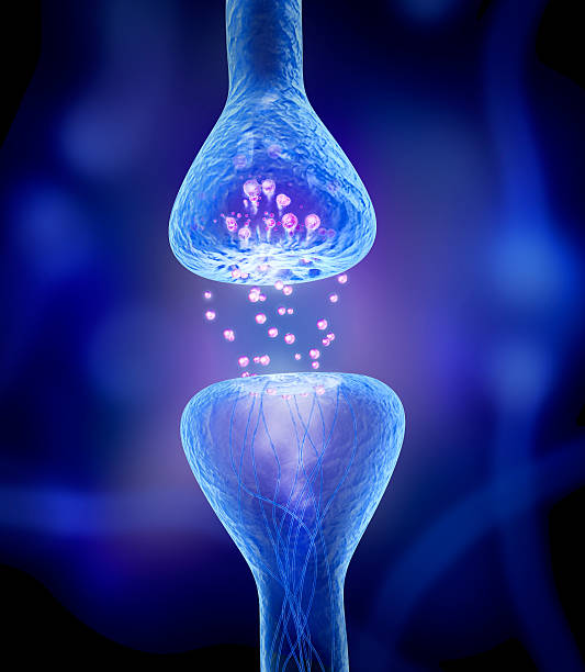 Active receptor isolated on blue stock photo