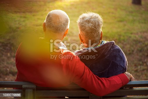 Active, mixed race senior adult couple enjoy outdoor park in spring or autumn season at sunset.  They sit on a park bench and talk and laugh with each other.  African and middle eastern descent couple.  Rear view.