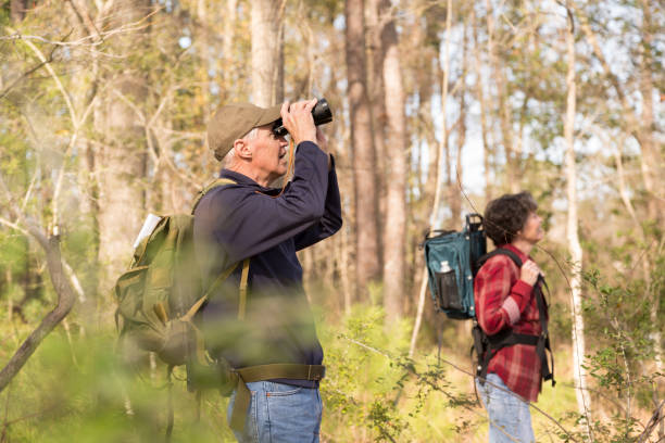 Active senior adult couple hiking in woods. stock photo