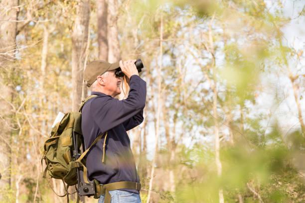 Active senior adult man hiking in woods, bird watching. stock photo