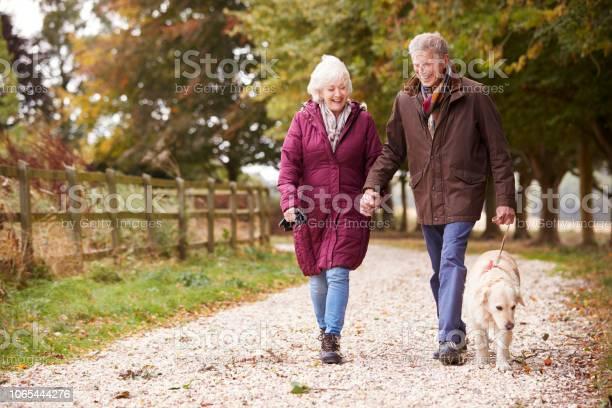 Active senior couple on autumn walk with dog on path through picture id1065444276?b=1&k=6&m=1065444276&s=612x612&h=ykdhns0ft1cghaekdkumffgbcbvykjrbfcr q qbpzq=