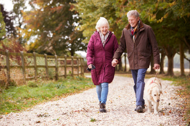 active senior couple on autumn walk with dog on path through countryside - walking zdjęcia i obrazy z banku zdjęć