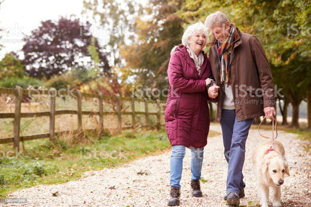 Active Senior Couple On Autumn Walk With Dog On Path Through Countryside royalty-free stock photo