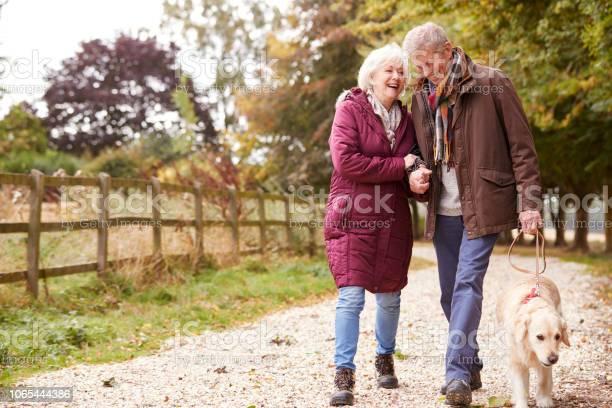 Active senior couple on autumn walk with dog on path through picture id1065444386?b=1&k=6&m=1065444386&s=612x612&h=e77kuszvgjkhyrrzzpi2bahgp59aepevq4dinwxthhu=