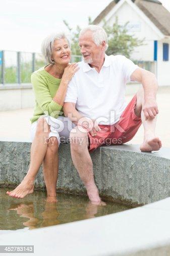 istock Active senior couple 452783143