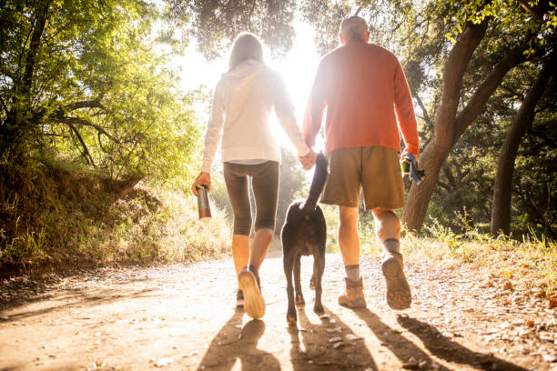 Active senior couple Walking with Dog on nature trail stock photo