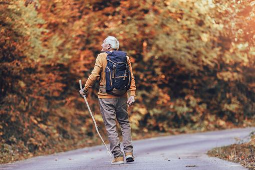 Senior man hiking in autumn forest.