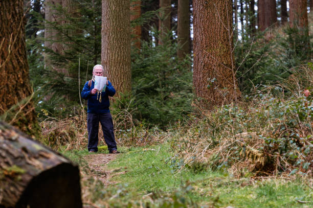 Active senior man looking at a map on a forest path in rural Dumfries and Galloway, south west Scotland. One active man forest bathing in an area of Douglas fir trees. The photograph was taken in the morning in early spring. The man is dressed for a cold day and is carrying a canvas rucksack. johnfscott stock pictures, royalty-free photos & images