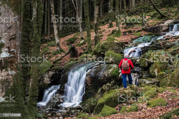 Photo of Active senior man next to a waterfall in deciduous woodland on a winter morning