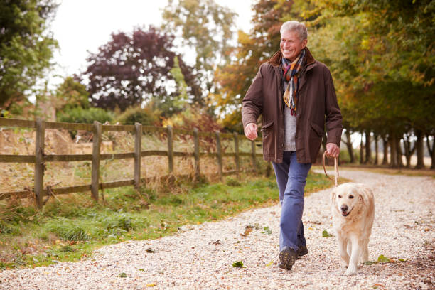 active senior man on autumn walk with dog on path through countryside - walking stock pictures, royalty-free photos & images