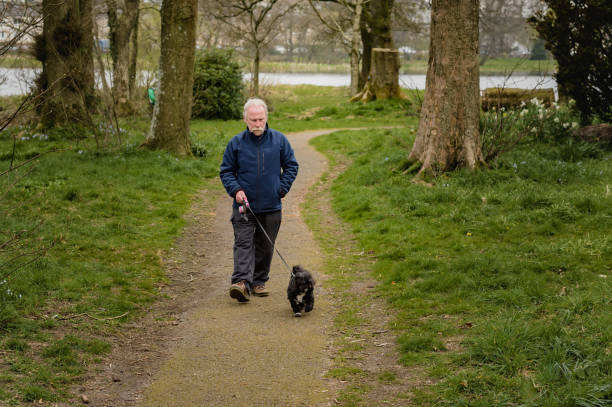 Active senior man out walking a dog in a deserted Scottish park during the Covid-19 lockdown stock photo