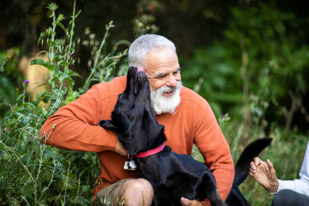Active Senior Man with his Dog stock photo