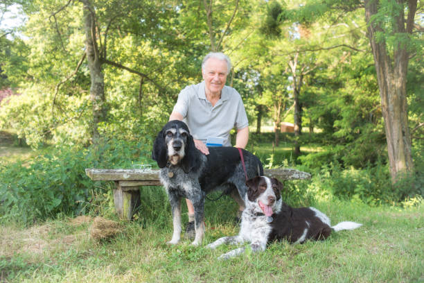 Active senior portrait with dogs stock photo