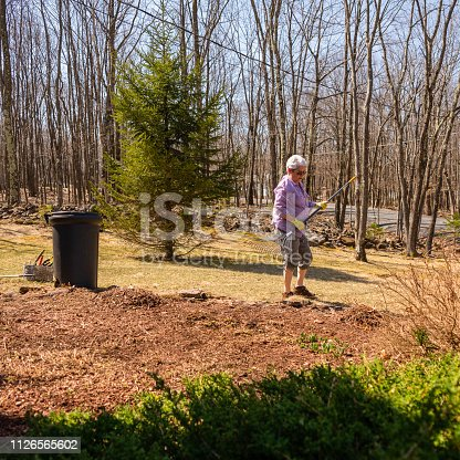 The active senior, 70-years-old, silver-haired woman doing the spring clean-up at the front yard in front of the country house in Poconos, Pennsylvania