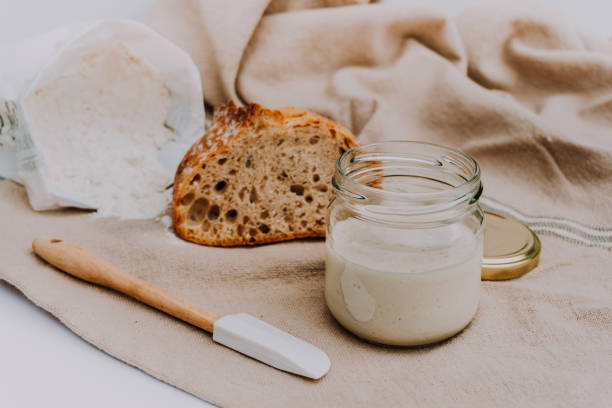Active sourdough for homemade bread. Wheat and rye bio-wholemeal bread with leaven. Real and organic food concept stock photo