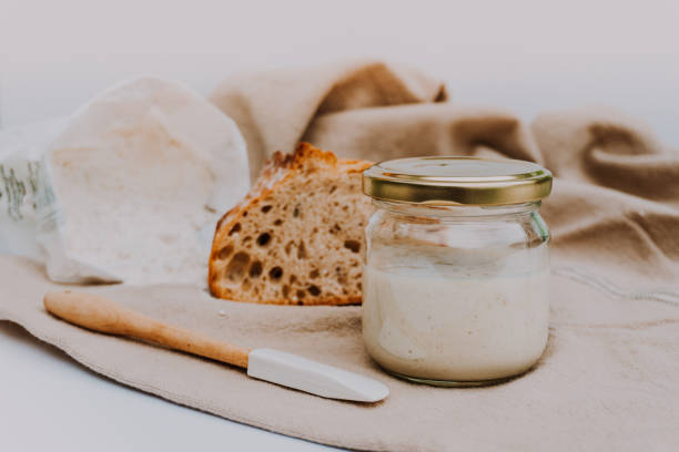 Active sourdough for homemade bread. Wheat and rye bio-wholemeal bread with leaven. Real and organic food stock photo