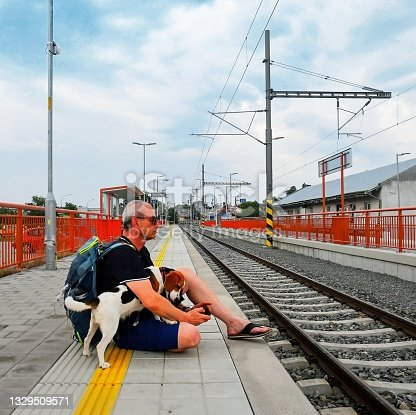 istock Active tourist with backpack using phone and waiting for train. Man and beagle dog waiting on railway station. Older tourist texting on mobile phone. Vacation concept 1329509571