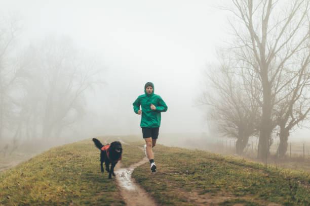 Active young man jogging with his dog Photo of active young man jogging with his dog in a foggy morning male animal stock pictures, royalty-free photos & images