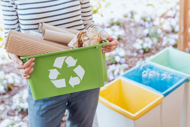 activist sorting paper waste - environmental conservation stock photos and pictures