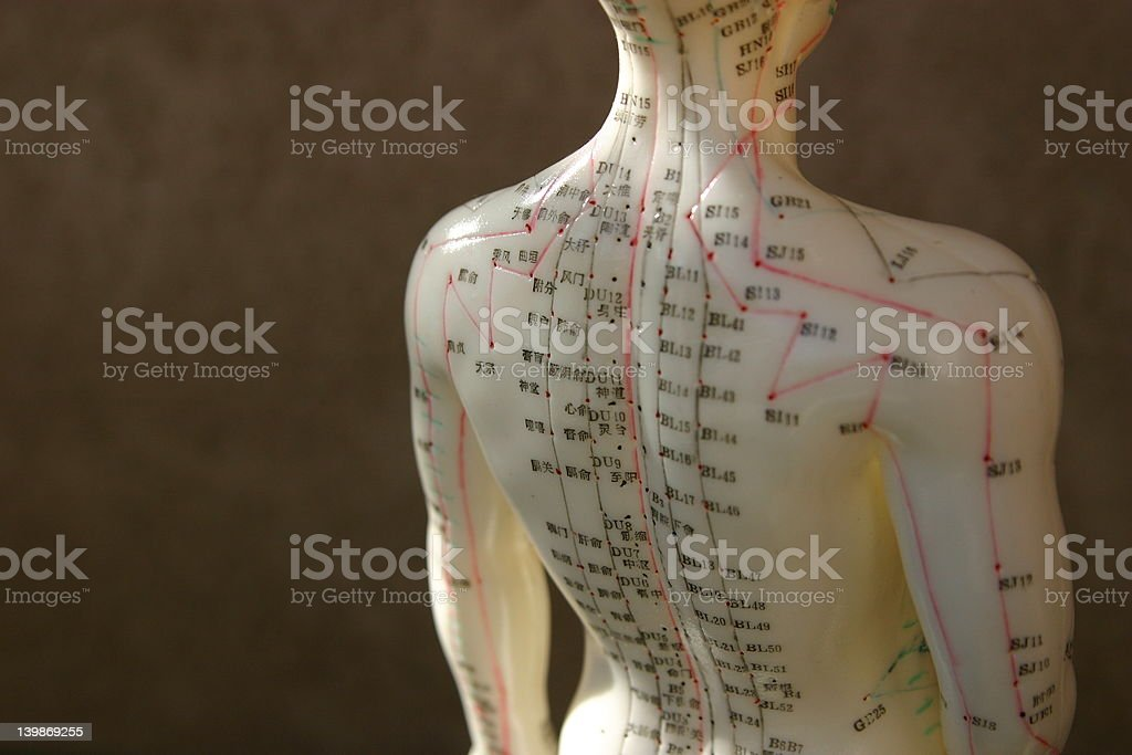 Boneco de Acupunctura - fotografia de stock
