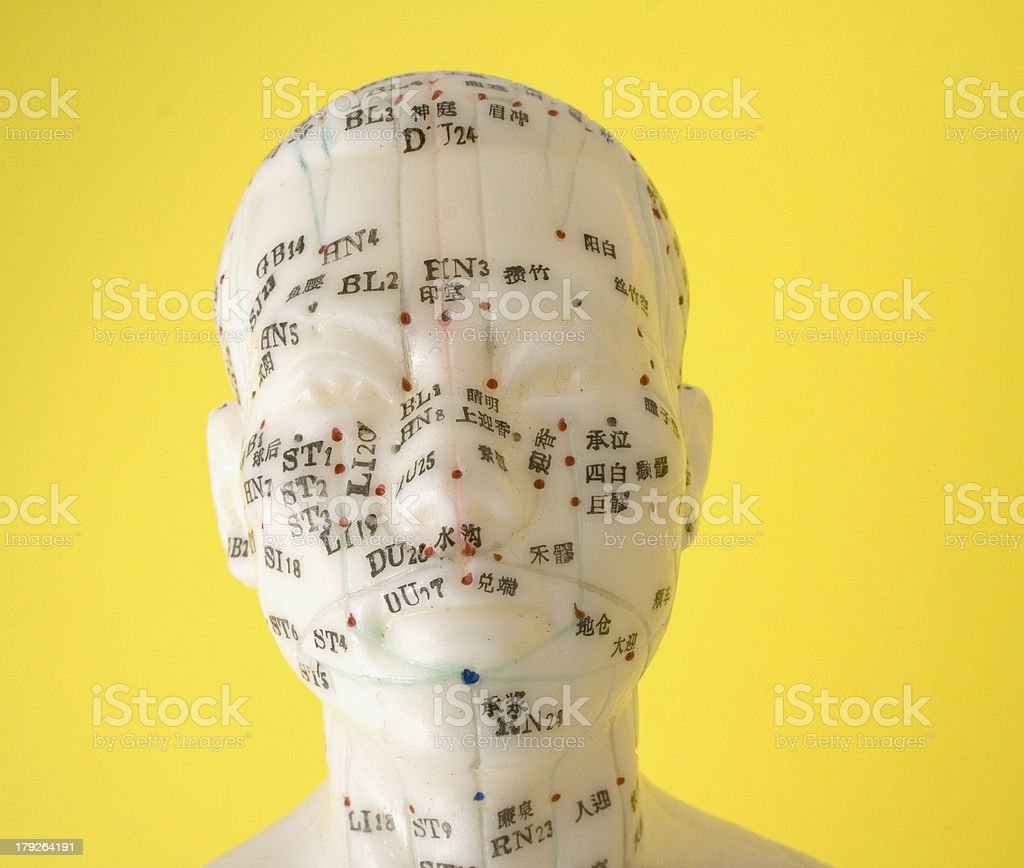 Acupuncture Dummy royalty-free stock photo
