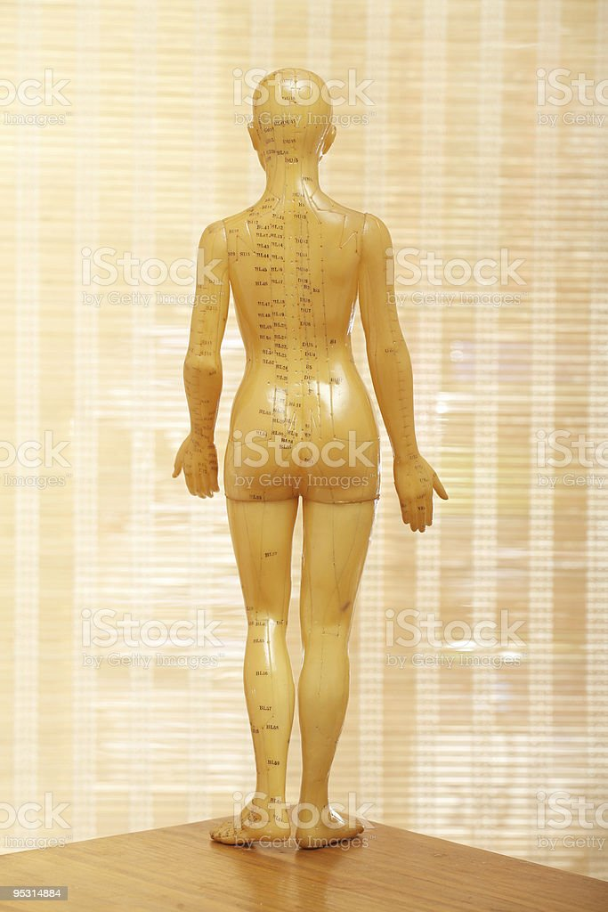 Acupuncture female model from the back stock photo