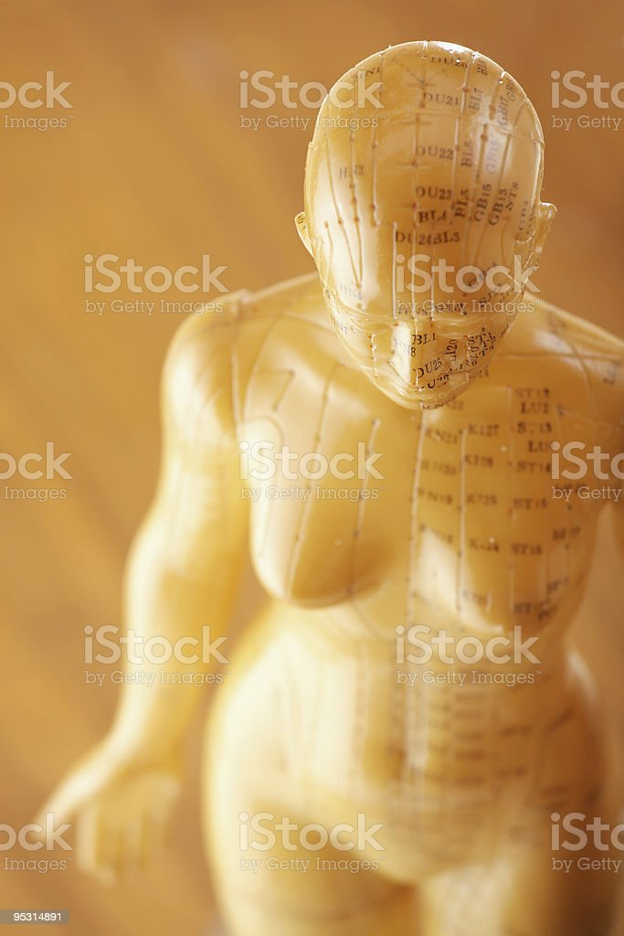 Acupuncture female model stock photo