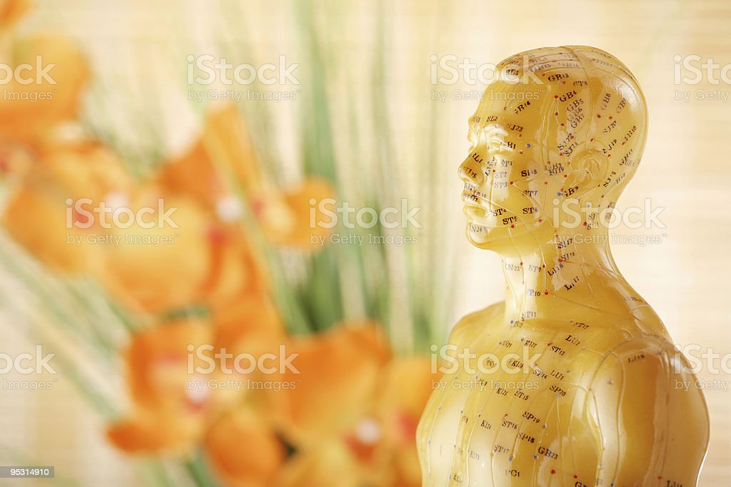 Acupuncture male model torso stock photo