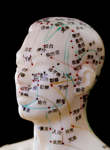 Acupuncture Model Human Head Stock Photo - Download Image ...