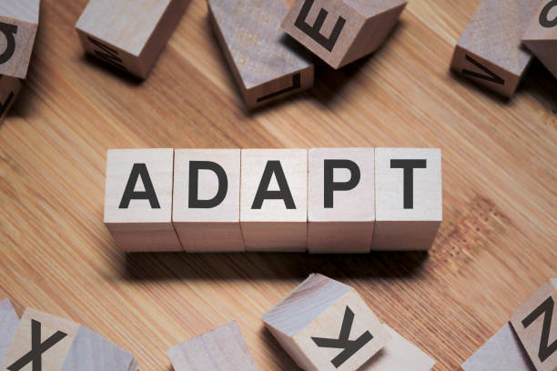 Adapt Word In Wooden Cube stock photo